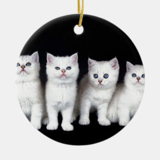 Ornement Rond En Céramique Rangée de quatre chatons blancs sur background.JPG