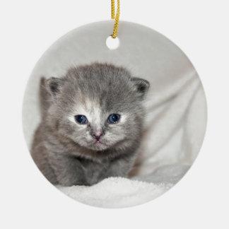 Ornement Rond En Céramique Regardez ce petit chaton gris