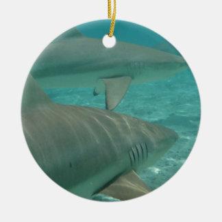 Ornement Rond En Céramique shark