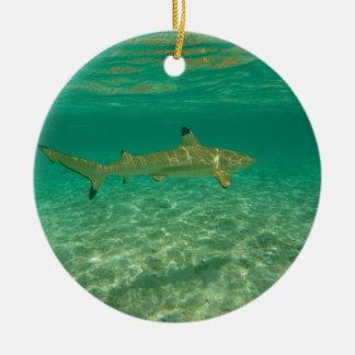 Ornement Rond En Céramique Shark in bora bora