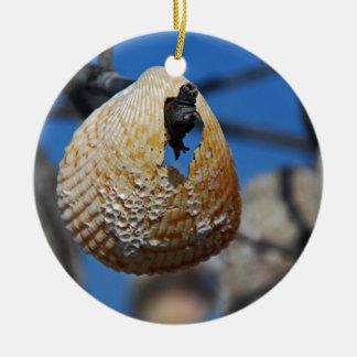 Ornement Rond En Céramique Shell au rivage