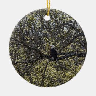 Ornement Rond En Céramique Surveillance d'Eagle Painterly