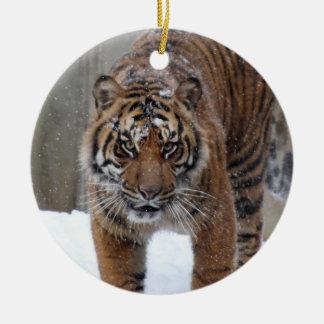 Ornement Rond En Céramique Tigre Damai de Smithsonien | Sumatran