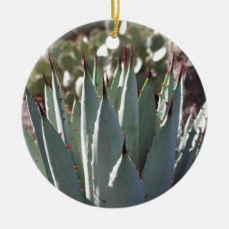 Ornement Rond En Céramique Transitoires d'agave