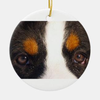 Ornement Rond En Céramique yeux de bernese-montagne-chien-rouille