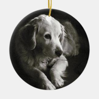Ornement triste noir et blanc du chien |