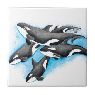 orques dans le bleu petit carreau carré