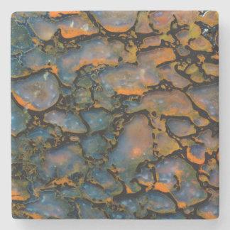 Os de dinosaure Petrified orange Dessous-de-verre En Pierre