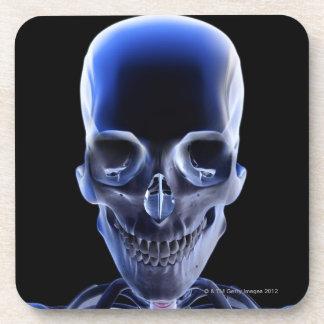 Os de la tête et du cou 9 dessous-de-verre
