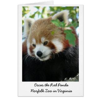 Oscar le panda rouge carte de vœux