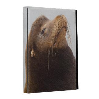 Otarie de la Californie Étui iPad Folio