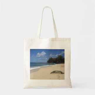 Otarie prenant un bain de soleil sur la plage hawa sacs