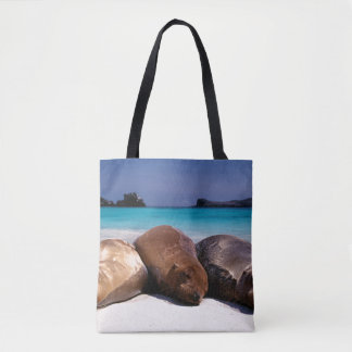 Otaries dormant sur la plage | Equateur Sac