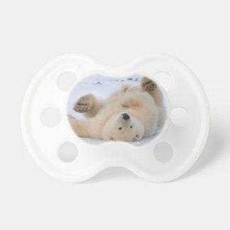 ours blanc, maritimus d'Ursus, petit animal Tétine