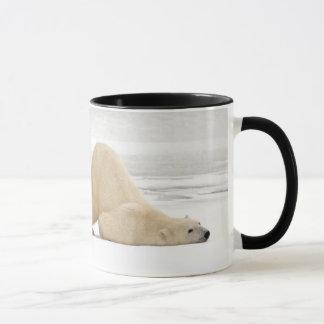 Ours blanc se rayant sur la toundra congelée mug