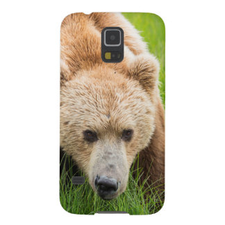 Ours de Brown Protections Galaxy S5