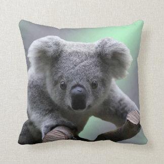 Ours de koala coussins carrés