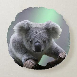 Ours de koala coussins ronds