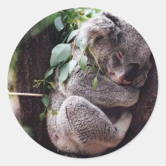 Ours de koala mignon détendant dans un arbre sticker rond