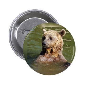 ours de natation pin's
