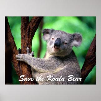 Ours-Économies d'Affiche-Koala