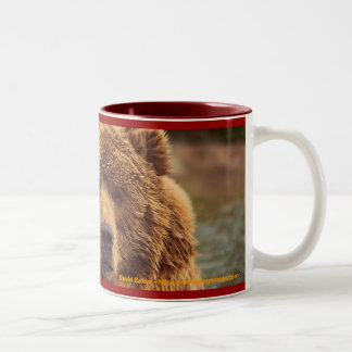 Ours gris amical tasse 2 couleurs