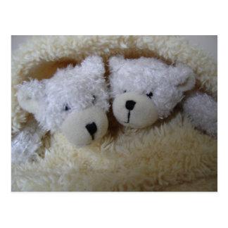 ours jumeaux d'annonce de bébé dans une couverture cartes postales