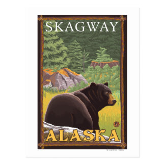 Ours noir dans la forêt - Skagway, Alaska Carte Postale