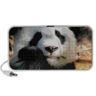 Ours panda affamé haut-parleur notebook
