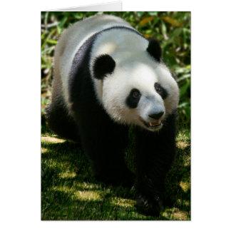Ours panda carte de vœux