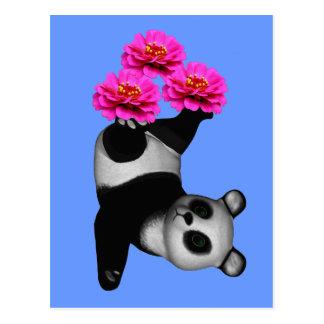 Ours panda et carte postale rose de fleur de