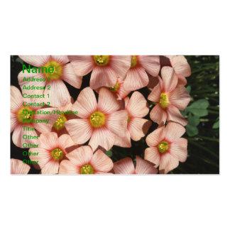 Oxalis, fleurs de bois-oseille carte de visite standard
