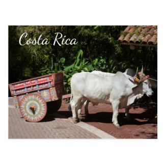 Oxcart, carte postale du Costa Rica