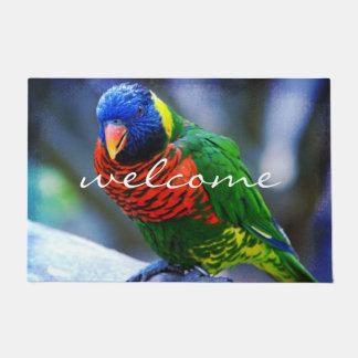 Paillasson Photo rouge colorée mignonne d'oiseau de vert bleu