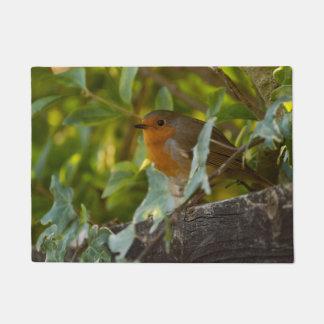Paillasson Robin