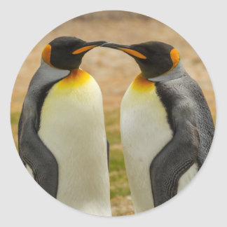 Paires du Roi pingouins, Malouines Sticker Rond