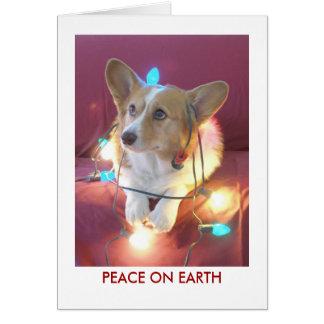 Paix sur terre cartes de vœux
