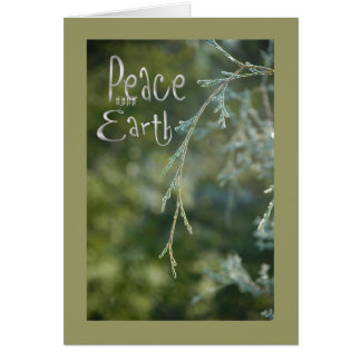 Paix verte sur la carte de Noël de la terre