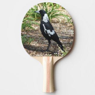 Palette de ping-pong de pie australienne raquette de ping pong