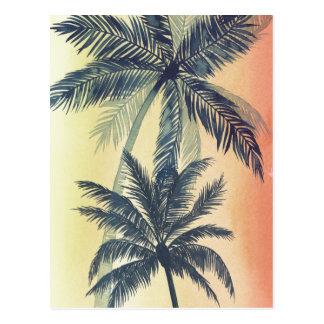 Palmettes tropicales carte postale