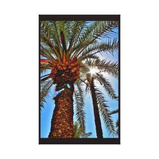 Palmier-dattier d'après-midi toile