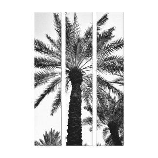 Palmier-dattier de palais de murabba toiles