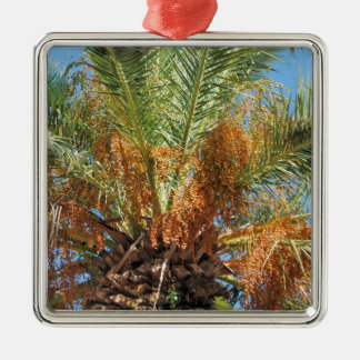 Palmier dattier ornement carré argenté