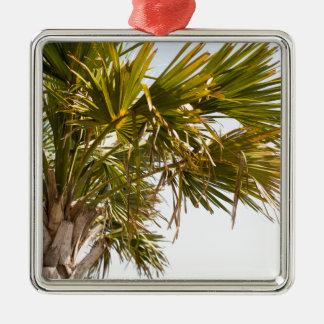 Palmier de la Côte Est Myrtle Beach célèbre Ornement Carré Argenté