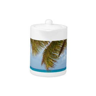 Palmier vert sur la plage pendant la journée