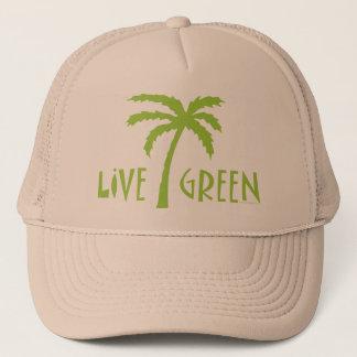 Palmier vert vivant ambiant casquette