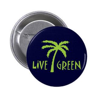 Palmier vert vivant ambiant pin's