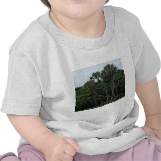 Palmiers dans la ville t-shirts