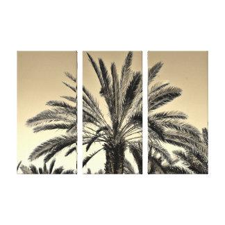 Palmiers-dattiers de sépia toile