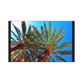 Palmiers-dattiers lumineux toile